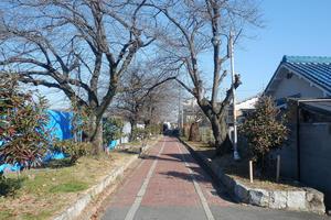 「鴨川運河」と煉瓦の物語~京都伏見深草を流れる琵琶湖疏水 その1