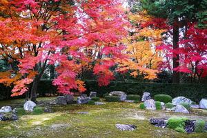 圓通寺/宝が池公園の紅葉特集 ~日本で最も有名な借景庭園|MKタクシー