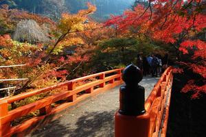 西明寺(槙尾)の紅葉特集 ~真っ赤な欄干と真っ赤な紅葉|MKタクシー
