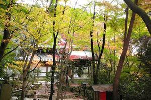 長楽寺の紅葉特集 ~銀閣寺作庭にあたり試みに作られた名庭|MKタクシー