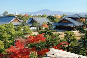 二条城の紅葉特集 ~二の丸庭園、本丸庭園、清流園の趣きの異なる紅葉|MKタクシー