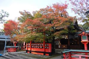 車折神社の紅葉特集 ~玉垣と紅葉はどっちが赤い?|MKタクシー