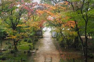 浄住寺の紅葉特集 ~今や数少ない「隠れた紅葉スポット」|MKタクシー