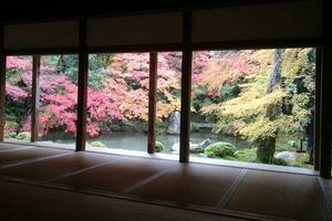蓮華寺の紅葉特集 ~京を代表する池泉観賞式庭園の紅葉|MKタクシー