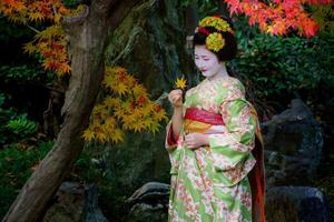 『京都の芸舞妓さん写真集』全集 ~2017年